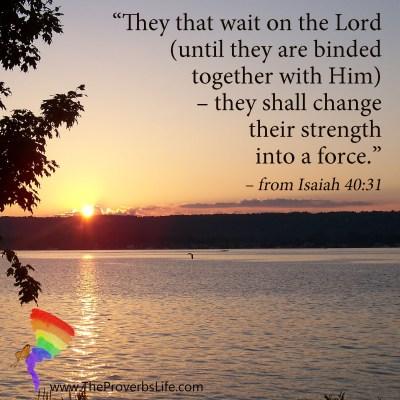 Scripture Focus Isaiah 40:31