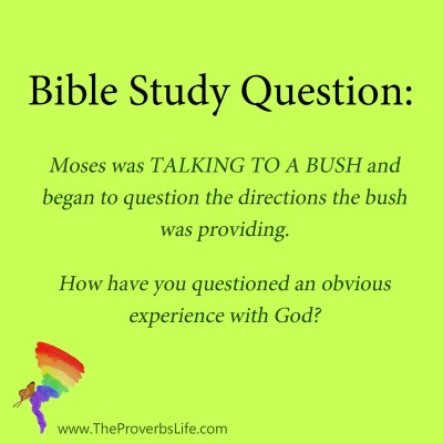 Bible Study Question - obvious experience with God