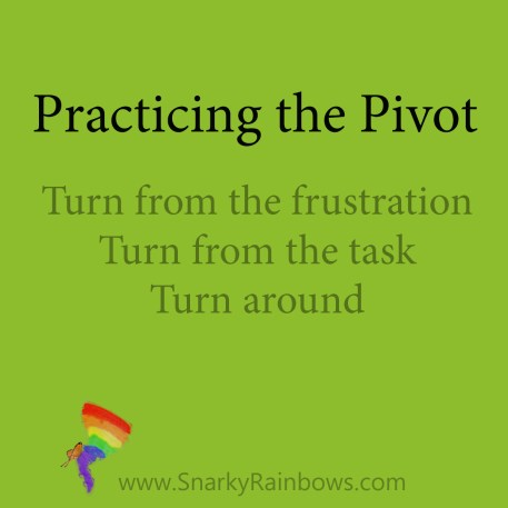 Practicing the Pivot Turn from the frustration Turn from the Task Turn around