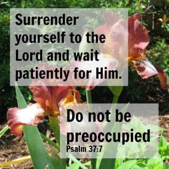 Surrender to God; Find Rest