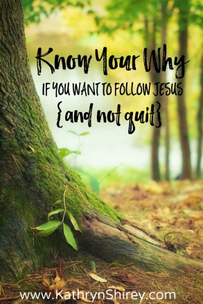 Do you ever feel unsteady in your faith? Know your why. Focus on why you're following Jesus and your faith will grow deep roots to keep you steady.
