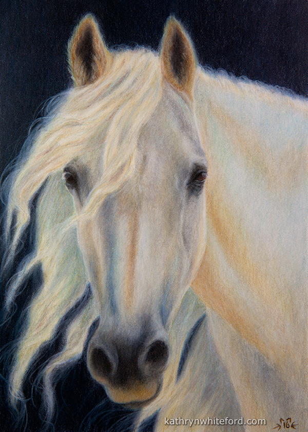 """""""White Horse"""" Coloured pencils on watercolour paper, 5x7 inches"""