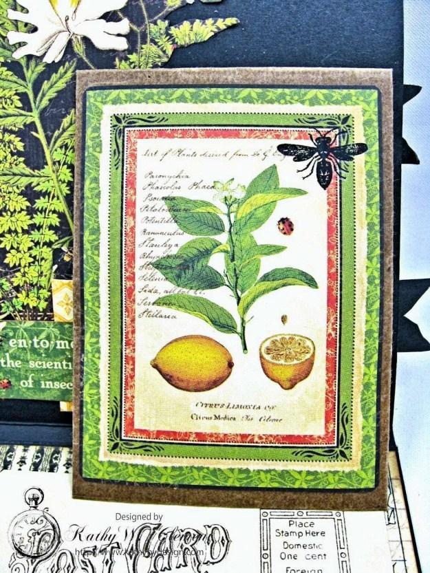 Nature Sketchbook Honeybee Shaker Card by Kathy Clement Photo 5
