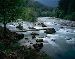 river pic 2013