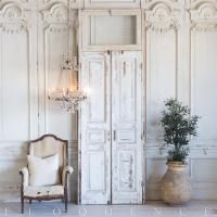 French Antique Doors | Antique Furniture