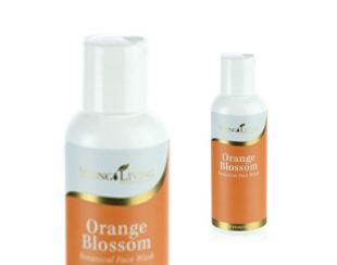 OrangeBlossom244