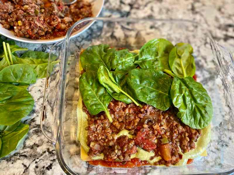 IMG_0361-1024x768 Vegan Lasagna