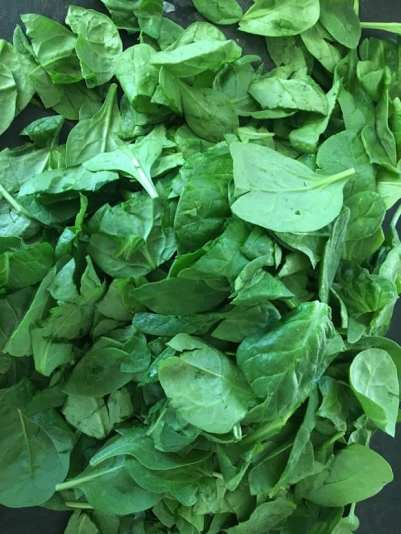 IMG_9297-225x300 Skinny Vegan Greek Spinach Pie