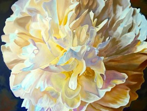 """Peonies #2"" Collectible Canvas Print 36"" x 48"": $650.00"