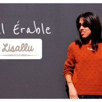 Craft Lovers ♥ Pull Érable en Katia Merino 100% par Lisallu