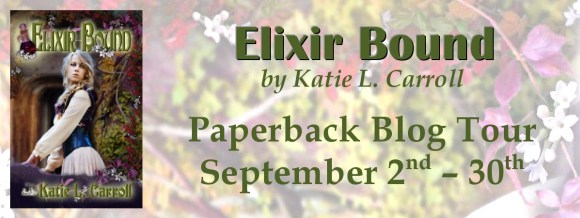 Blog Tour Banner-page0001