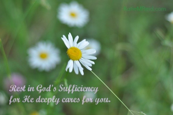 Rest in God's Sovereignty image by Katie M Reid
