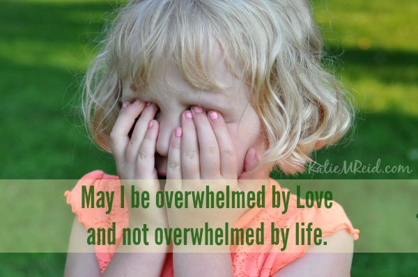 Overwhelmed with love not life by Katie M. Reid
