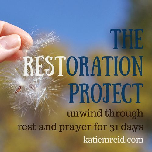 The Restoration Project Series by Katie M Reid