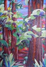 Redwoods II - Katiepm