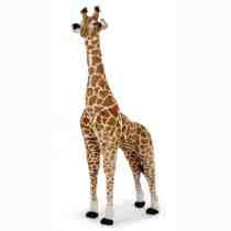 CC Giraffe