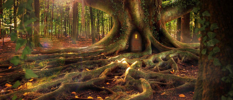 Mediumship Tree