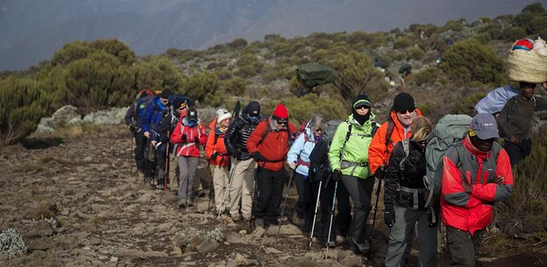 Climb Kilimanjaro in January - March
