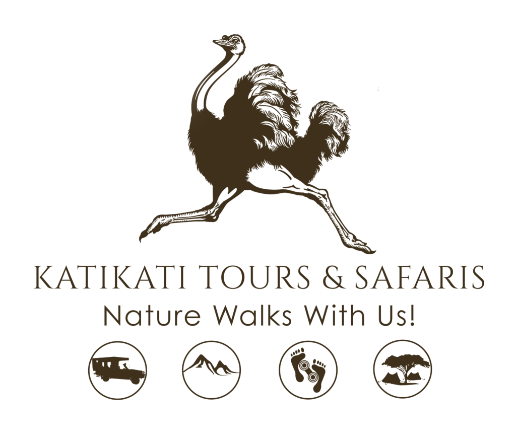 Katikati Tours and Safaris Logo