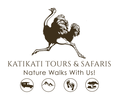 Katikati Tours and Safaris