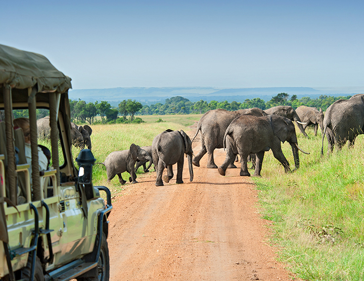 tanzania luxury safaris