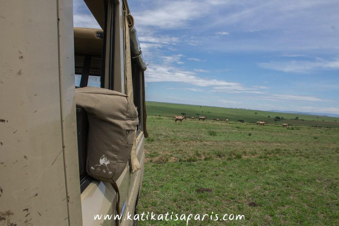 bean-bag-on-photo-safari