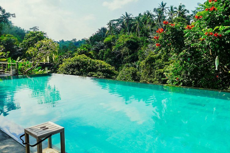 luxury on a budget at jungle fish infinity pool in bali. Black Bedroom Furniture Sets. Home Design Ideas