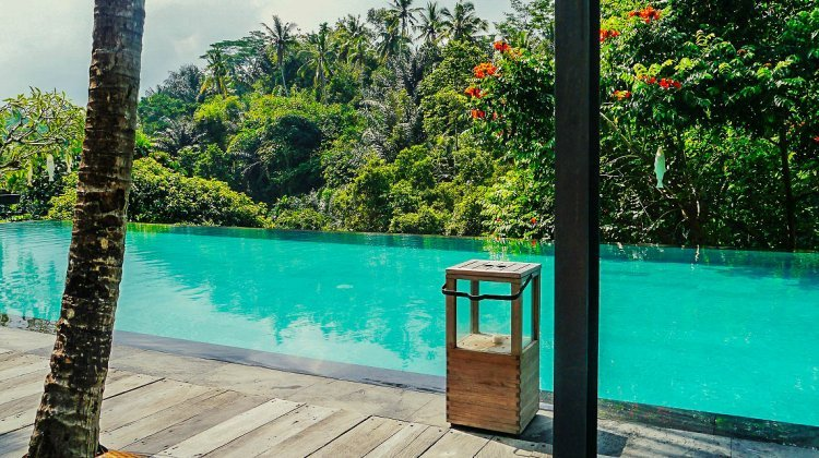 Luxury on a budget at Jungle Fish infinity pool in Bali