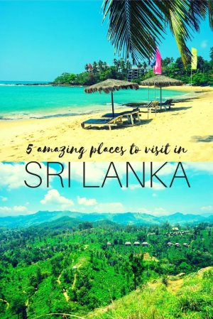 Sri Lanka is an amazingly diverse country full of culture, nature and wildlife spotting, but where do you want to go? Here's a brief guide to narrowing down your destination depending on your interests.