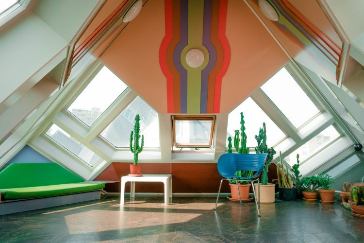 Image showing the interior of a cube house decorated modernly with slanted windows and cacti