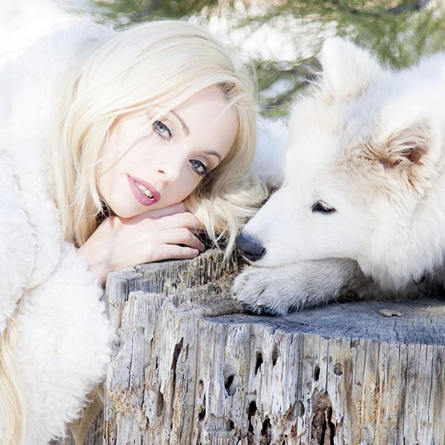 SnowQueen WhiteWolf -no knight in shining armour