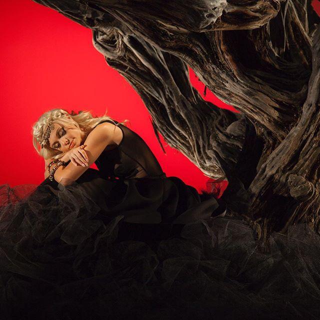 The day I got to be a fairy in a tree ☄link in bio ridethewave