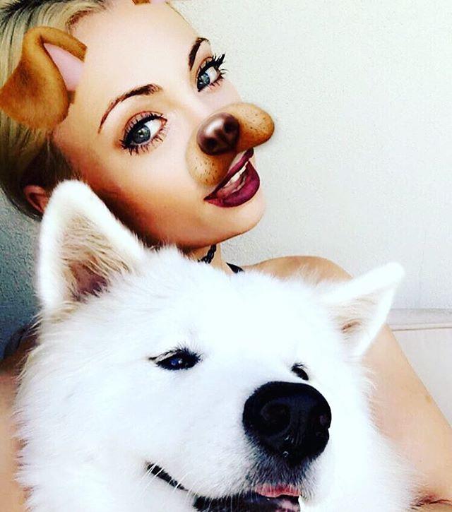 bff @annikasamoyed puppy samoyed