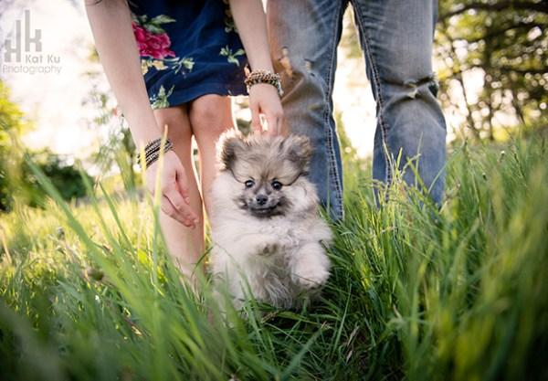 Kat-Ku-Photography_Ollie_05