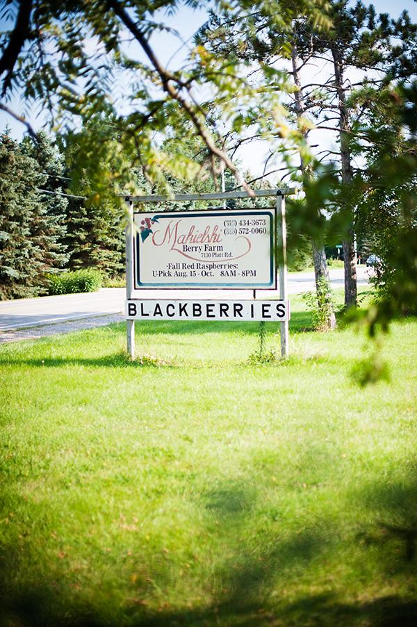 Pure Michigan_Kat Ku_Makielski Berry Farm_01