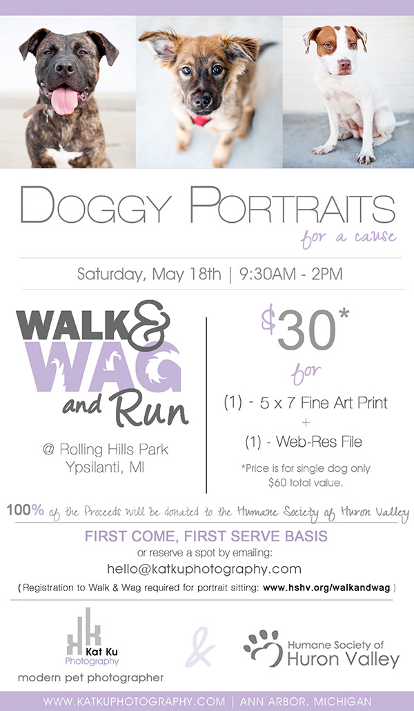 Walk-and-Wag-Doggy-Portraits-for-a-Cause
