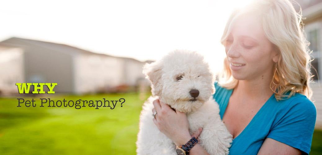Kat Ku Photography - Why Pet Photography