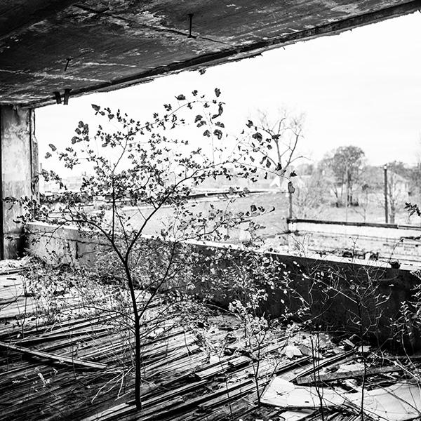 Kat Ku Photography_Detroit Schroeder_09