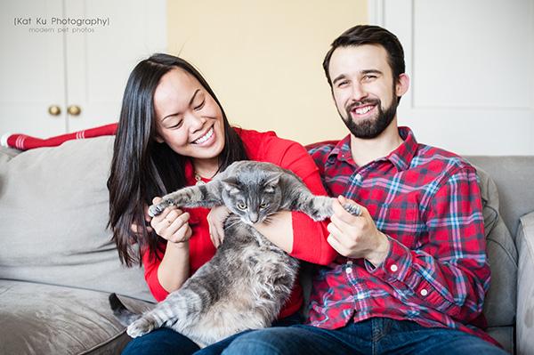 Kat Ku Photography_Dorian the Gray Cat22