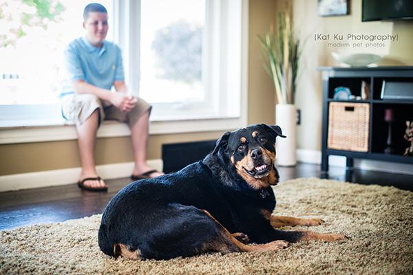 Kat Ku Photography_Canton Pet Photography_03