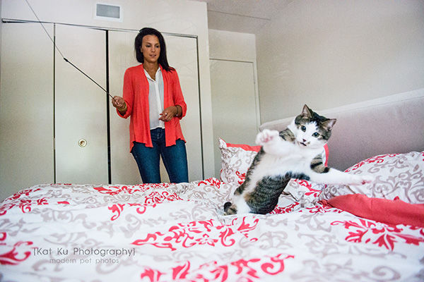 Kat Ku Photography_Lucy and Zappa the Cats_23