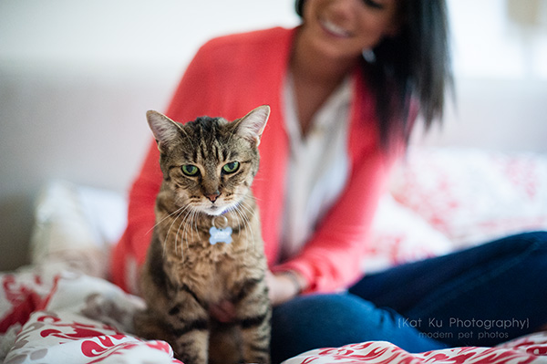 Kat Ku Photography_Lucy and Zappa the Cats_25