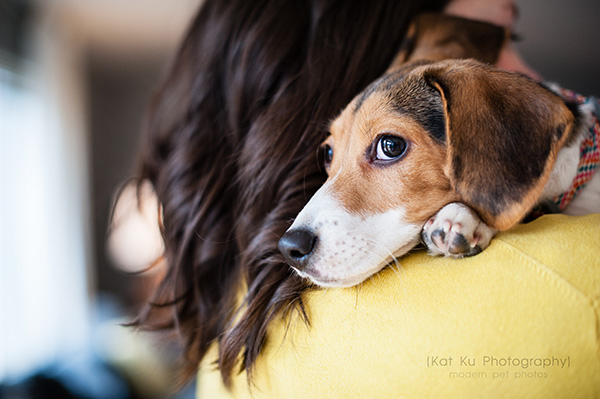 Kat Ku_Benny and Lulu_Beagle_18