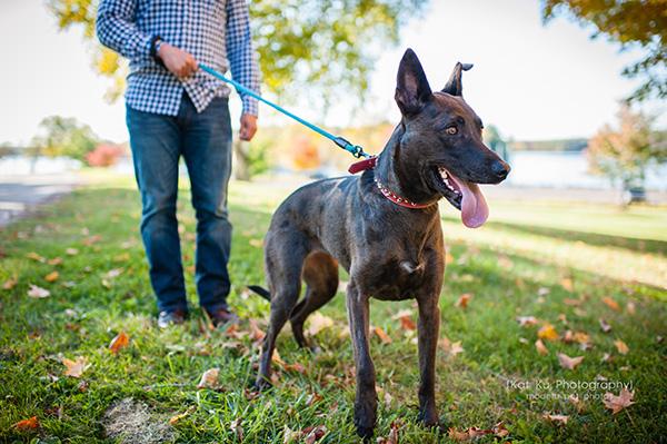 Kat Ku_Delilah and Tucker_Michigan Pets_06