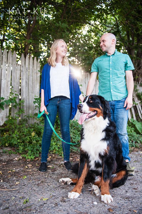 Kat Ku_Bernese Mountain Dog_Detroit Pet Photography_11
