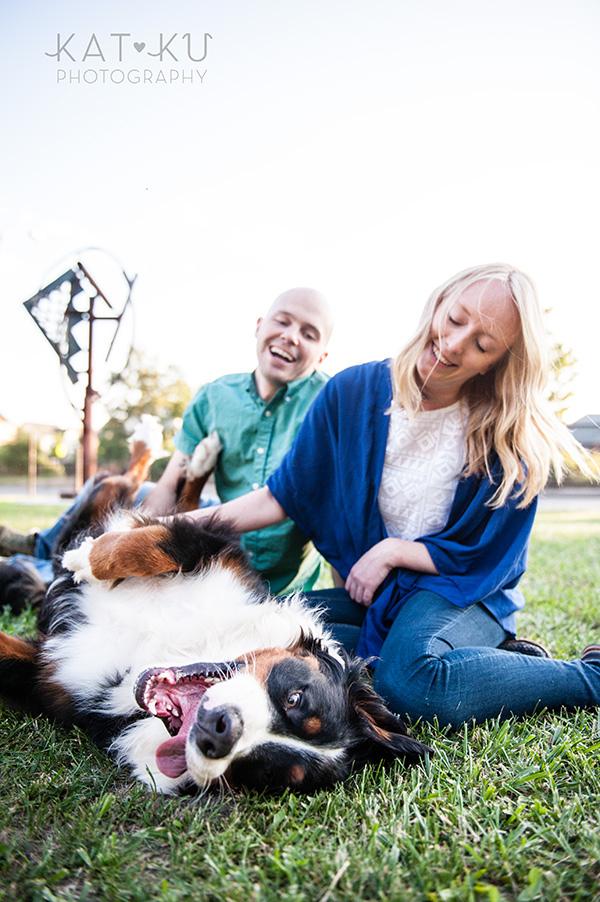 Kat Ku_Bernese Mountain Dog_Detroit Pet Photography_19