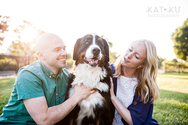 Kat Ku_Bernese Mountain Dog_Detroit Pet Photography_23