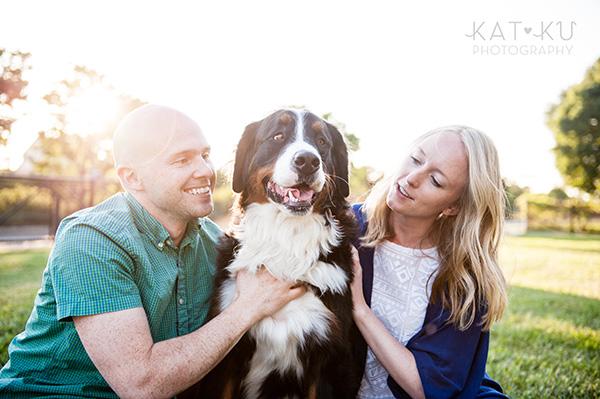 Kat Ku_Bernese Mountain Dog_Detroit Pet Photography_23