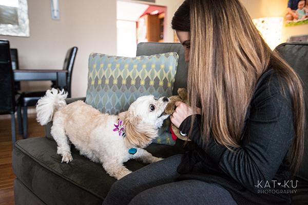 Kat Ku_Mattie and Jinx_Ann Arbor Dog Photography_09