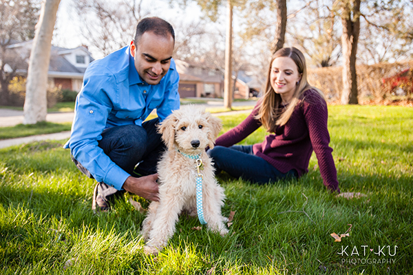 Kat Ku Pet Photography - Minnie Goldendoodle_11